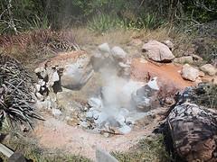 Fumaroles - Rincon de la Vieja National Park Tour - La Oveja Negra Tamarindo Tours