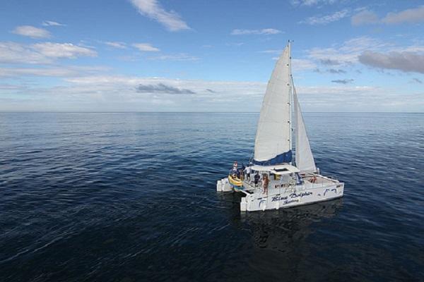 Blue Dolphin Sailing - La Oveja Negra Tamarindo - Tamarindo Tours
