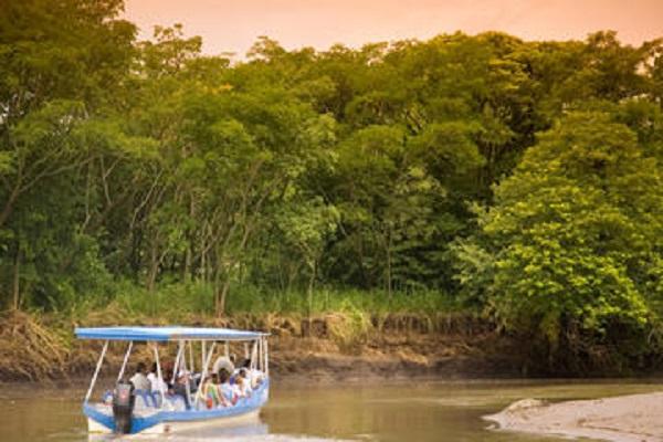 Palo Verde Boat Safari - La Oveja Negra Tamarindo Tours