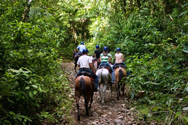Tamarindo Horseback Riding Tour - La Oveja Negra Tamarindo Tours