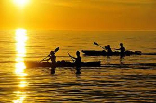 Kayak Tamarindo - La Oveja Negra Tamarindo Tours