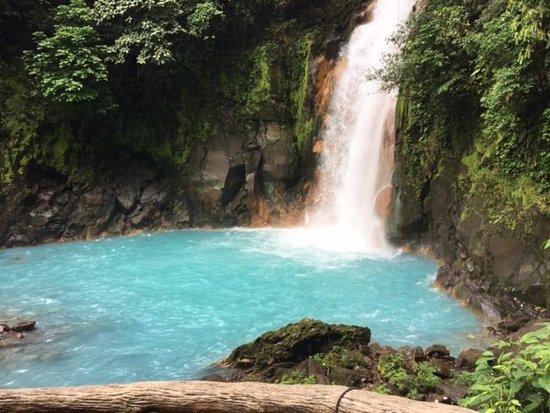 Rio Celeste - La Oveja Negra Tamarindo - Tamarindo Tours