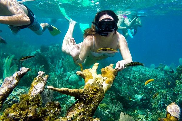 Snorkel Tamarindo - La Oveja Negra Tamarindo Tours
