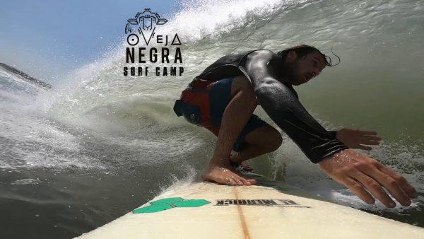 Tamarindo Surf Camp - La Oveja Negra Tamarindo Costa Rica Surf Camp