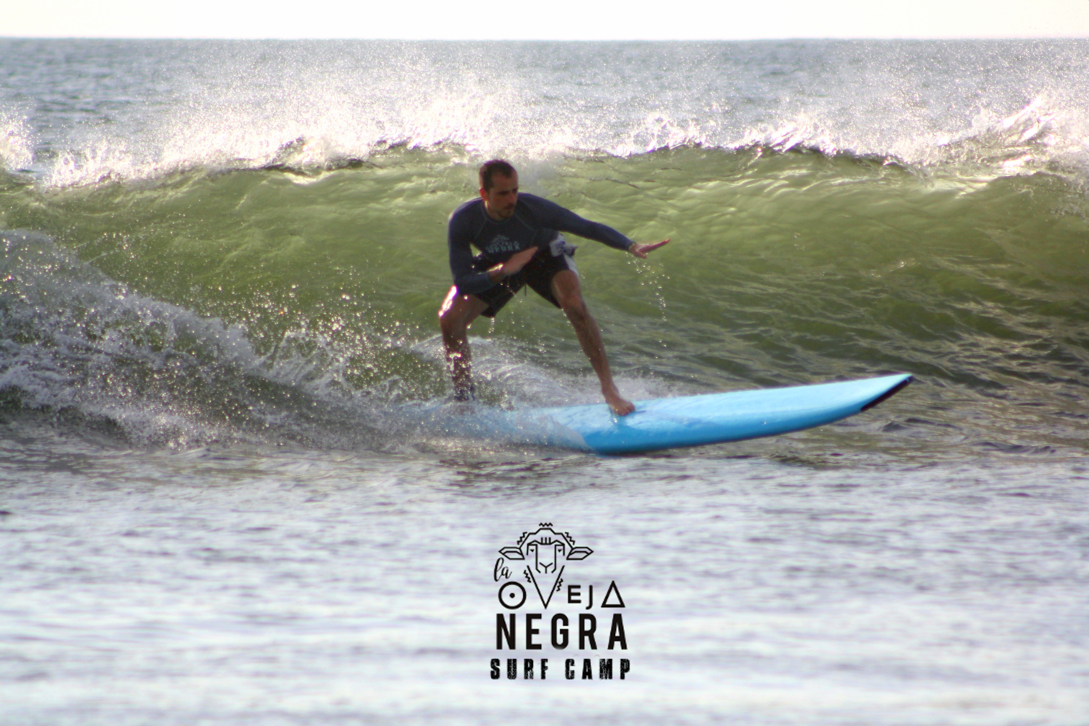 La Oveja Negra Tamarindo Surf Camp Costa Rica