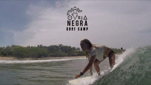 Tamarindo Surf Camp - La Oveja Negra Costa Rica Surf Camp